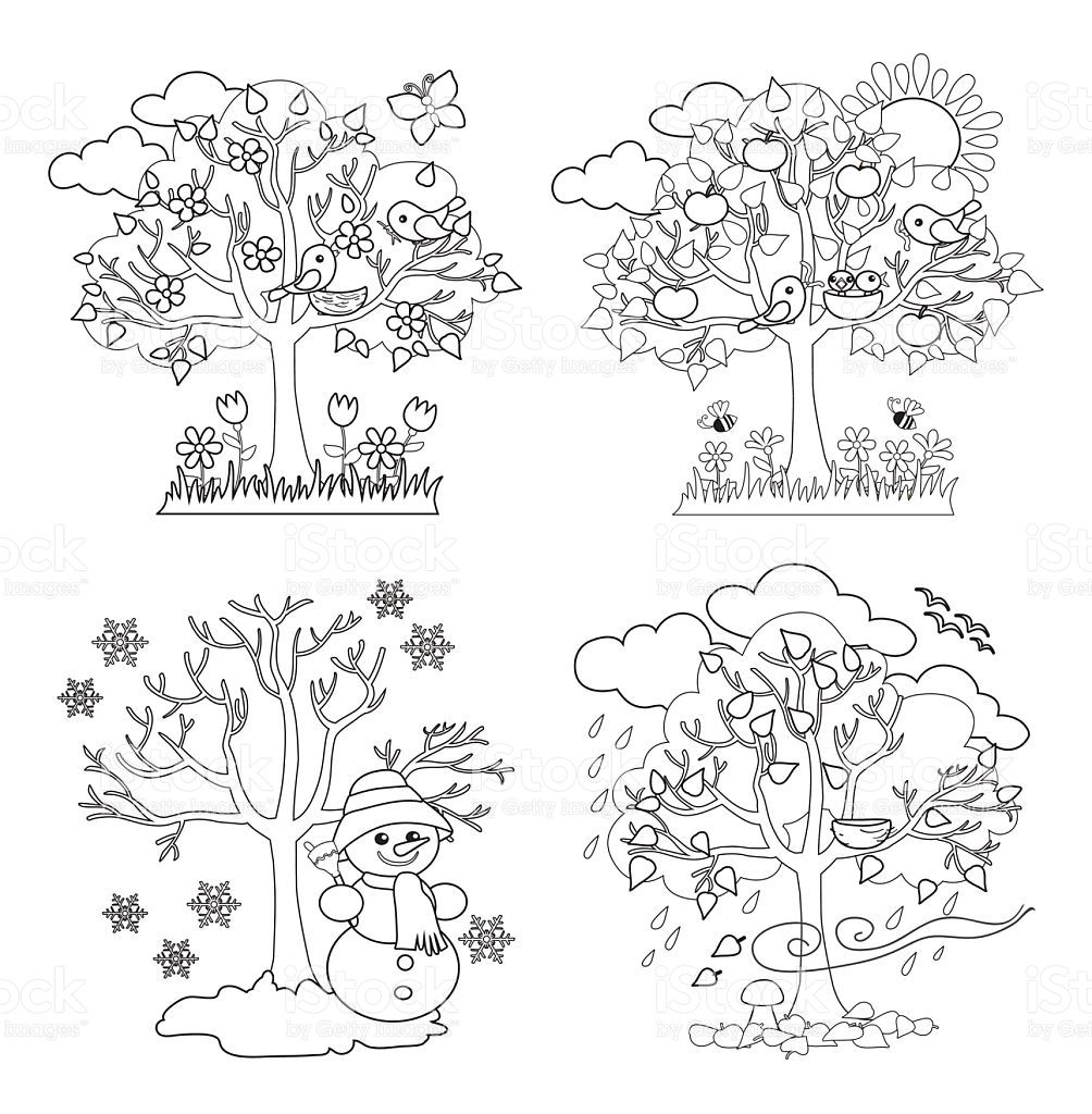 Four Seasons Trees Clipart and Vector with Spring, Summer, Fall and.