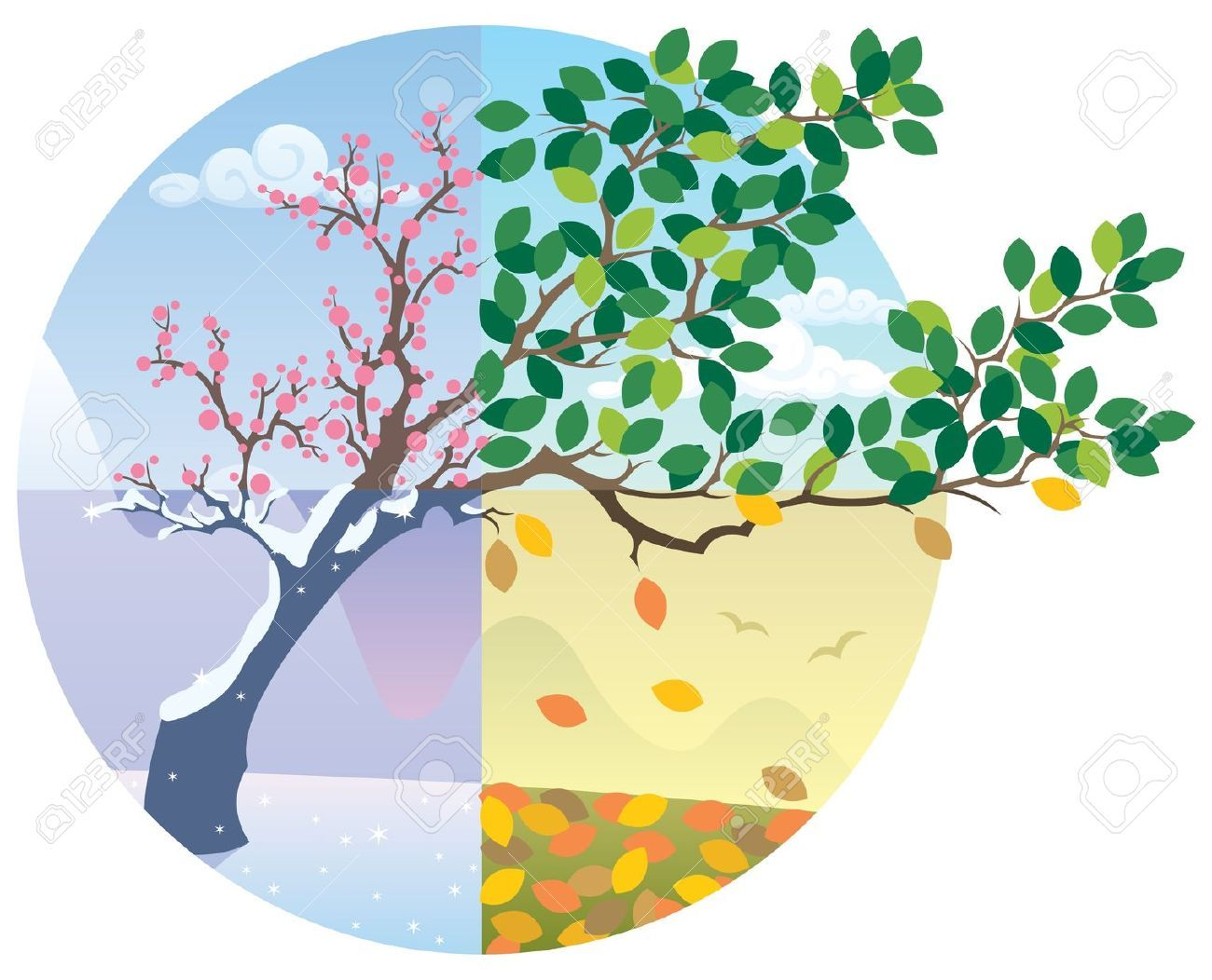 Four Seasons Clipart at GetDrawings.com.