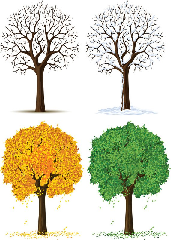 Tree Pack, Four Seasons Image, Four Season Tree Cutout.