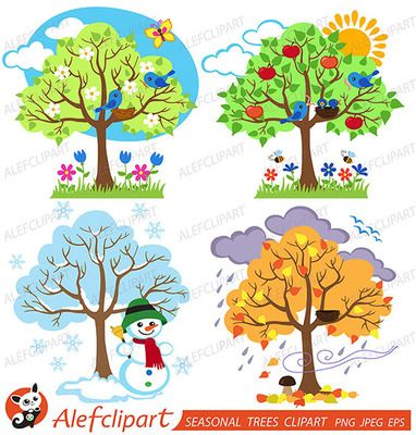 Four Seasons Trees Clipart and Vector with Spring, Summer.