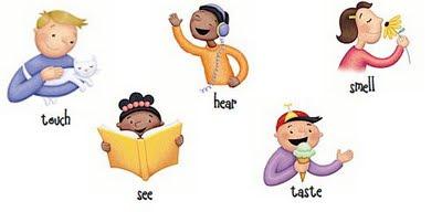 5 senses clipart grade 1, 5 senses grade 1 Transparent FREE.
