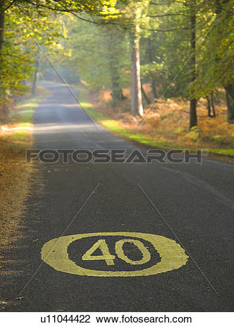 Stock Photo of England, Hampshire, New Forest. 40 mph speed limit.