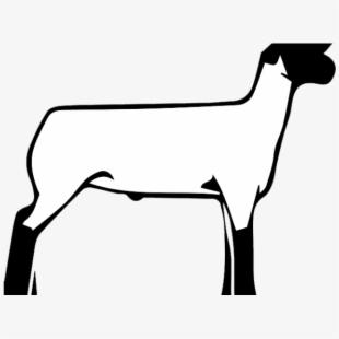 Lamb clipart club lamb, Lamb club lamb Transparent FREE for.
