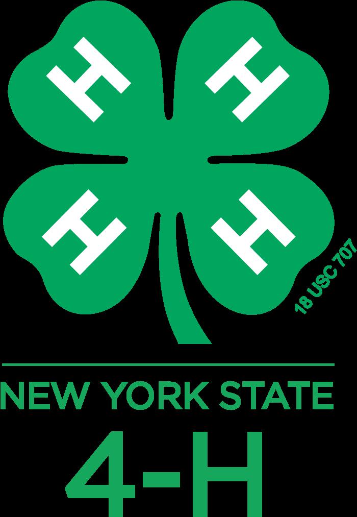 Download Nys 4h Logo Vert.