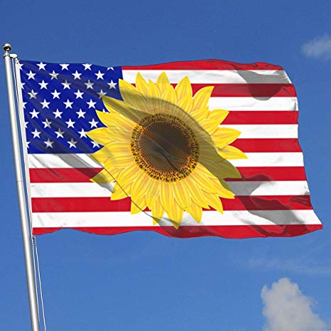 Amazon.com: JQDAPaflag Sunflower Clipart Breeze Flag 3 X 5.