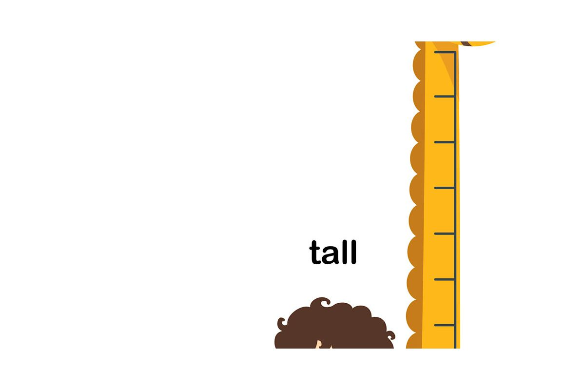 Can We Guess Your Height?.