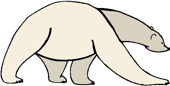Polar bears clip art 5.