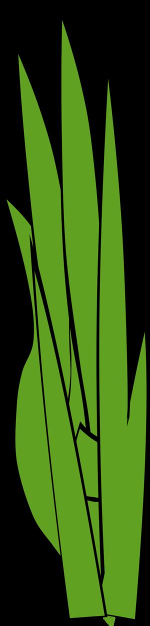 Blade Of Grass Clipart.