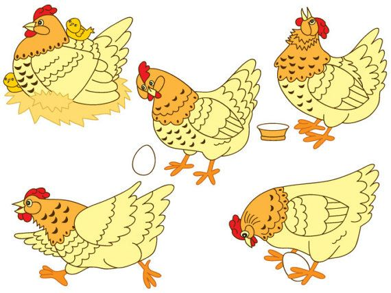 5 clipart hen Transparent pictures on F.