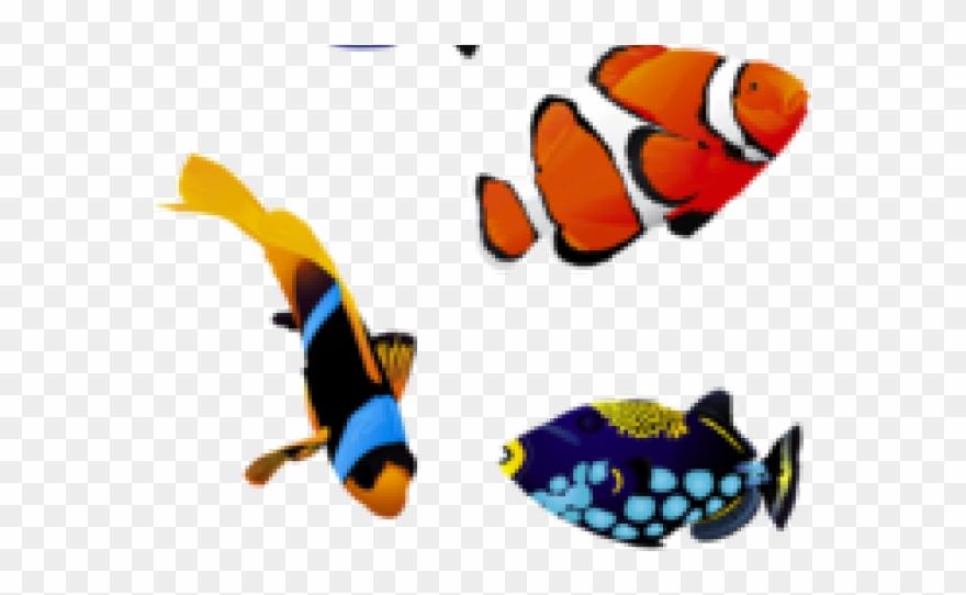 Original Clipart 5 Fish.