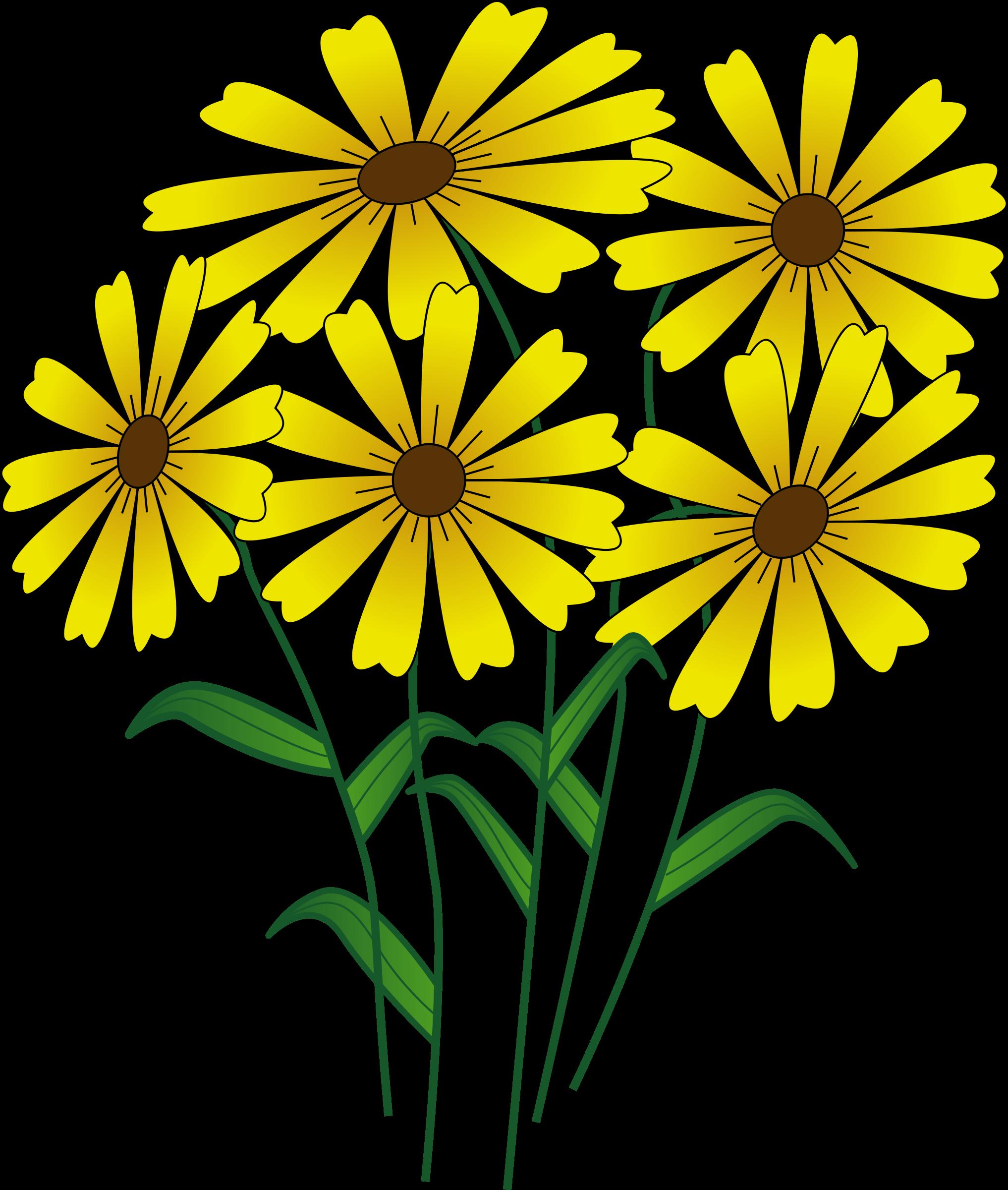 Clipart fall flower, Clipart fall flower Transparent FREE.