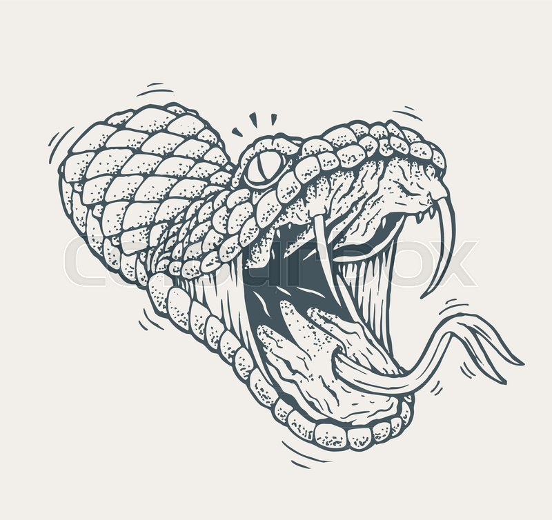 5 head snake clipart Transparent pictures on F.