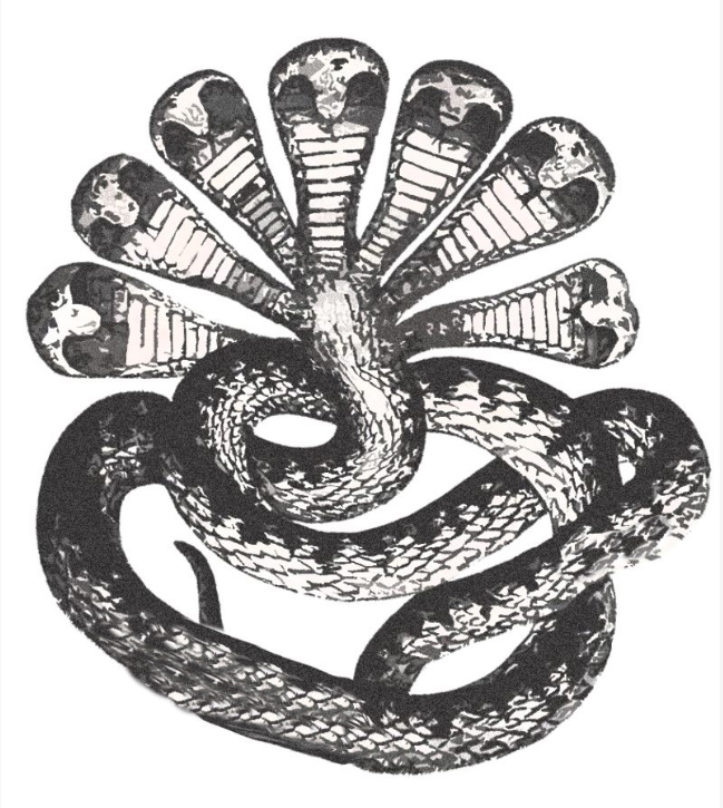 Drawn serpent headed snake.