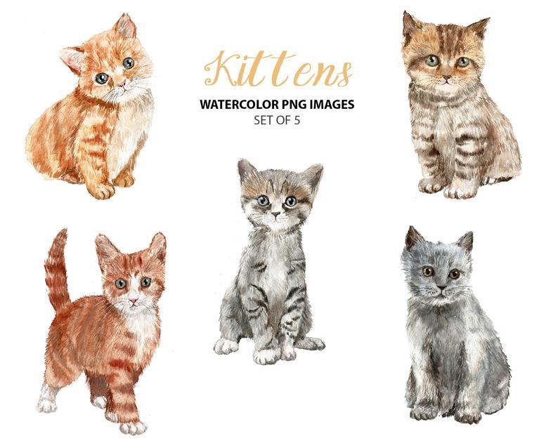 Kittens clipart 5 kitten, Kittens 5 kitten Transparent FREE.
