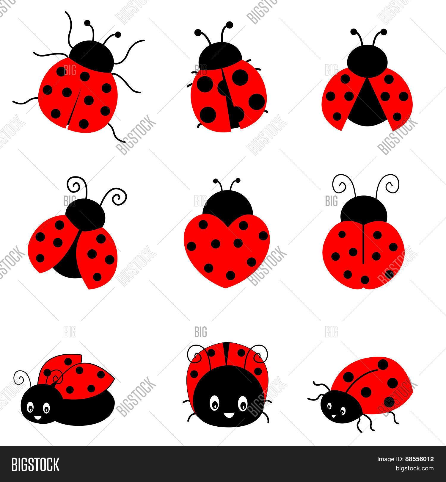 Ladybugs Image & Photo (Free Trial).