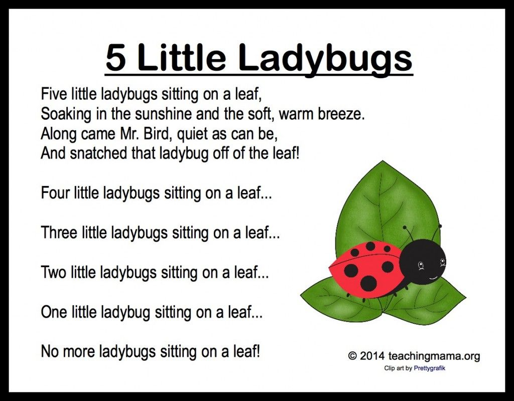 5 Little Ladybugs Song and Fingerplay.
