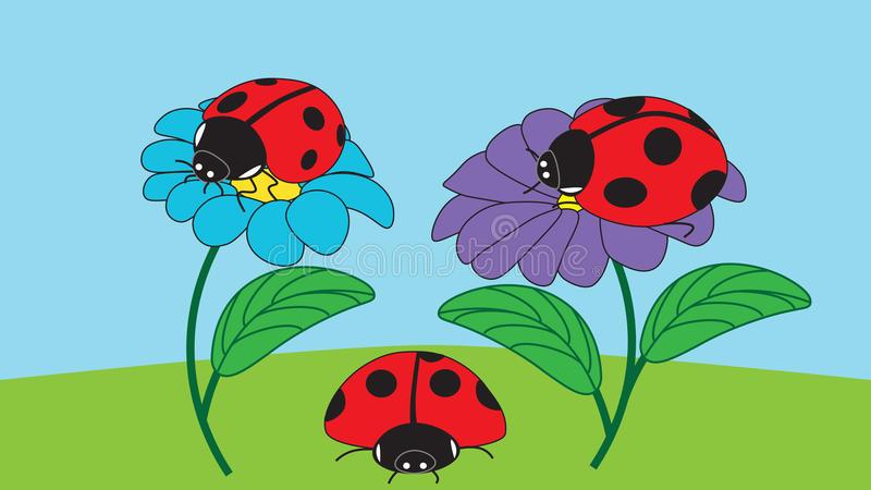 Ladybugs Sit Stock Illustrations.