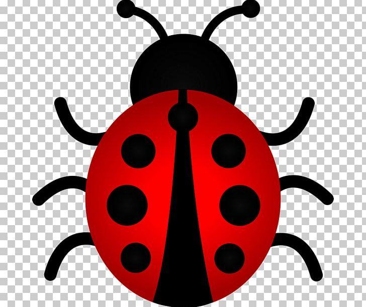 Ladybird Beetle The Ladybug PNG, Clipart, Animals, Arthropod.