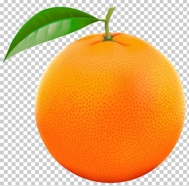 Grapefruit Orange Lemon PNG, Clipart, Bitter Orange, Citric.