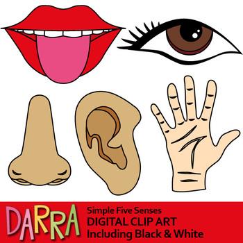 Five Senses Clip Art.