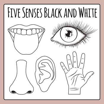 Five Senses Black and White Line Art Clip Art Pack for Commercial Use.