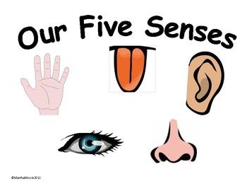 Free 5 Senses Cliparts, Download Free Clip Art, Free Clip Art on.