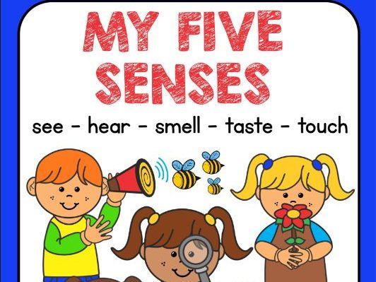 5 SENSES WORKBOOK.