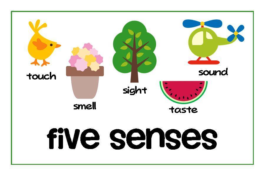 5 senses clipart 5 » Clipart Portal.