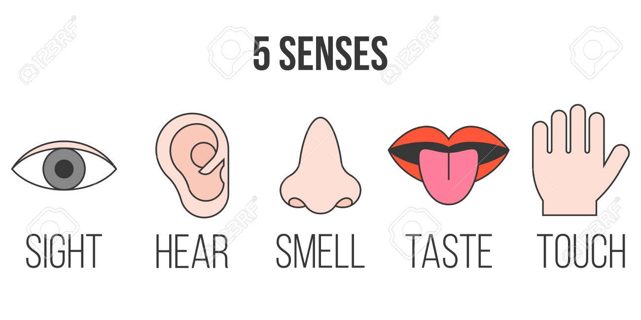 5 senses icon in outline collection with filled color.