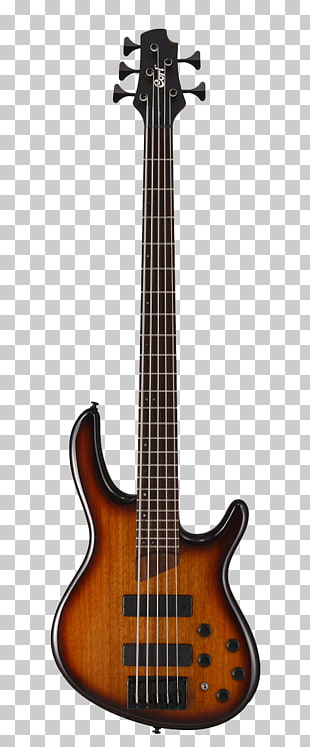 27 5 String Bass PNG cliparts for free download.