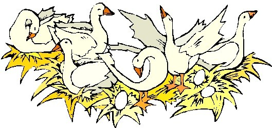 6 geese a laying clipart 4 » Clipart Portal.