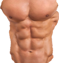 Download Free png six pack abs png for picsart.