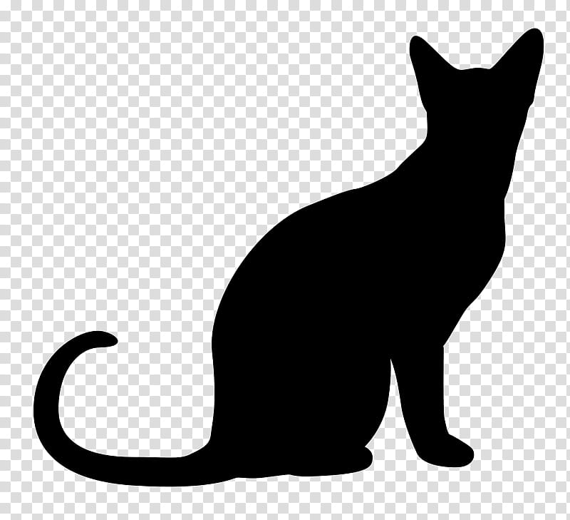 High Quality Cats , silhouette of cat transparent background PNG.