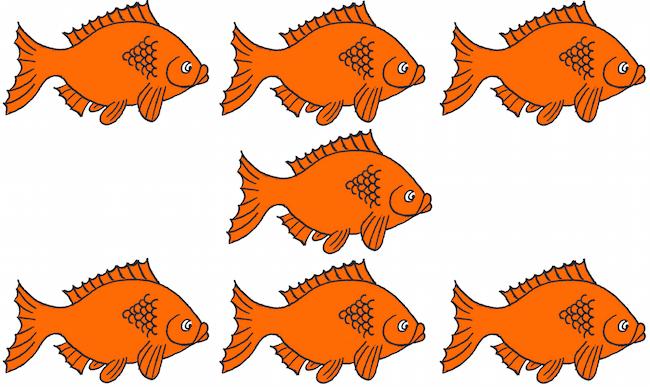 7 Fish Clipart.