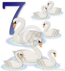 seven swans a swimming clip art.