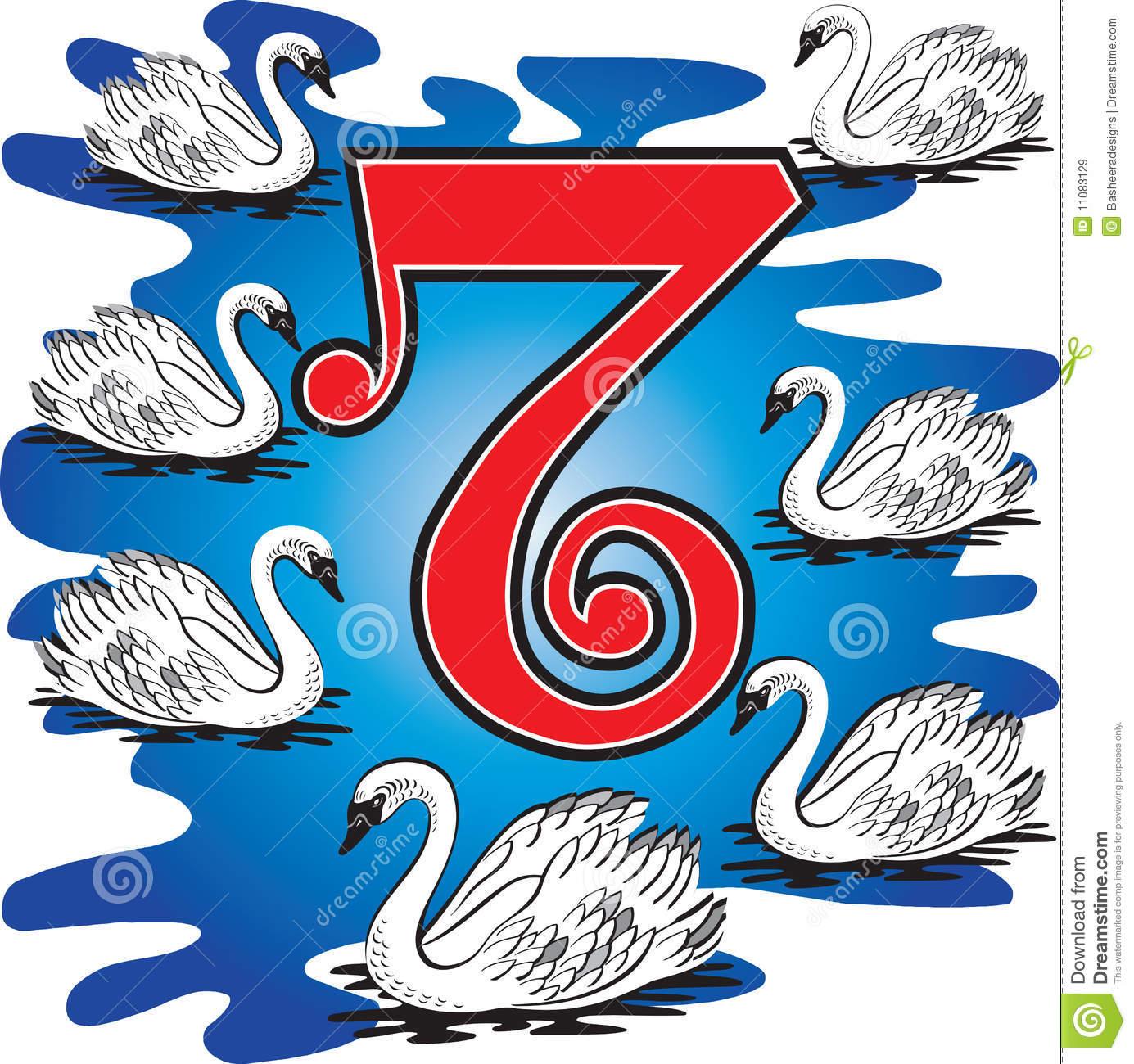 7 Swans Swimming stock vector. Illustration of bird, holiday.