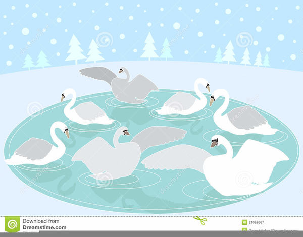 Seven Swans A Swimming Clipart.