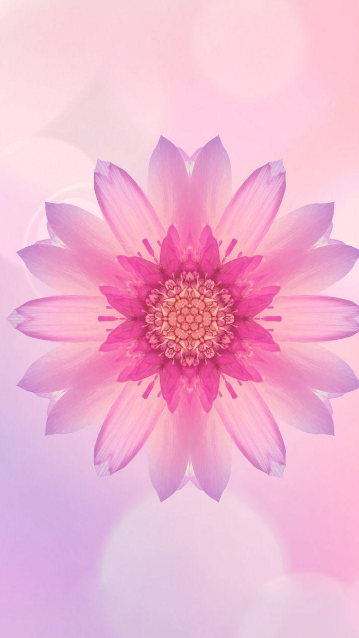 Pink flower, portrait, glare, huawei honor, 720x1280.