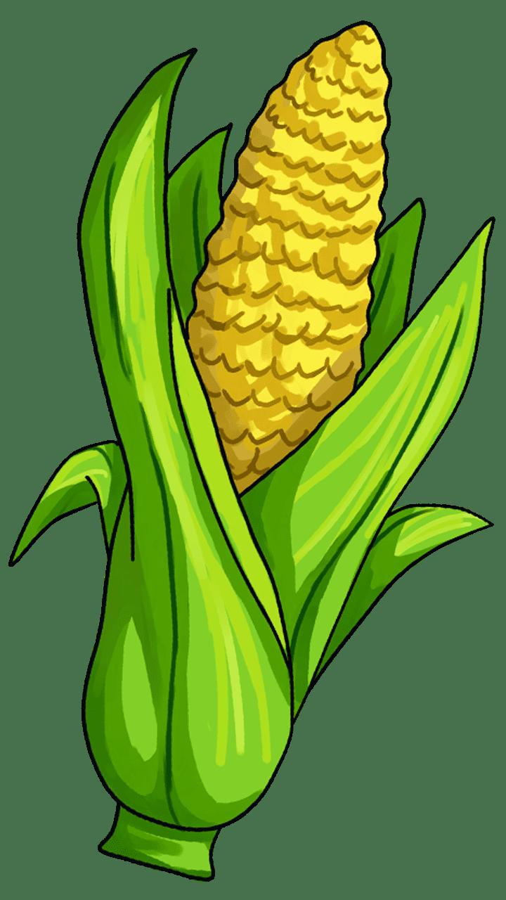Corn on the cob Candy corn Maize Vegetable Clip art.