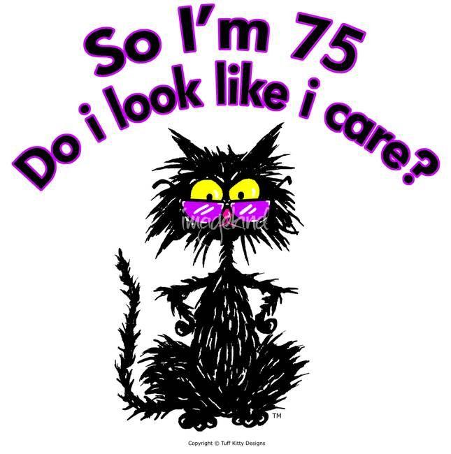 th Birthday Cat\