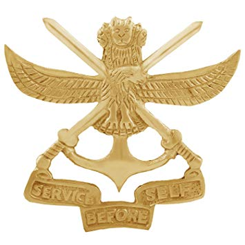 Autofy BRASS0017 Brass Army Cross Sword and Indian Emblem Service Before  Self Decal Badge for All Bikes (Gold).