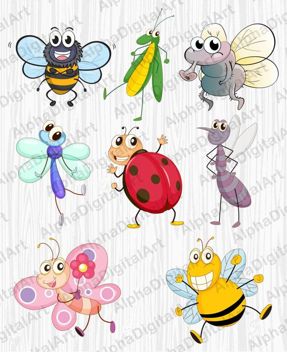 8 Cartoon Insects clipart,caterpillar clipart,butterfly.