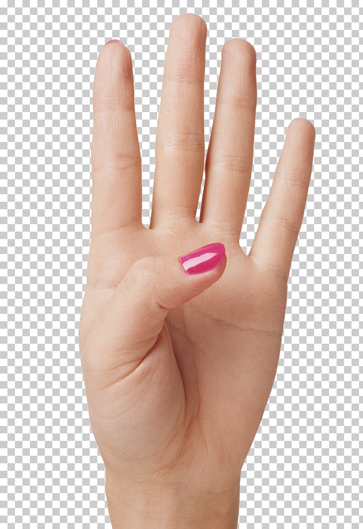 Finger Hand, Hand Showing Four Fingers , left human palm PNG.