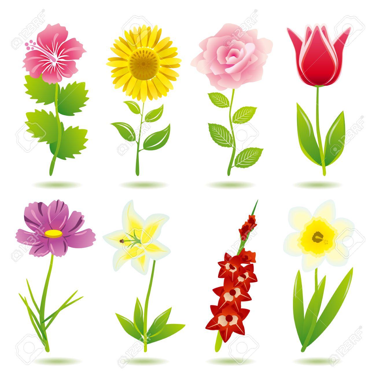 8 flower icons set.