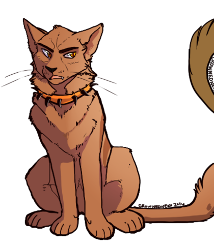 Warrior cat lineart blooclan.
