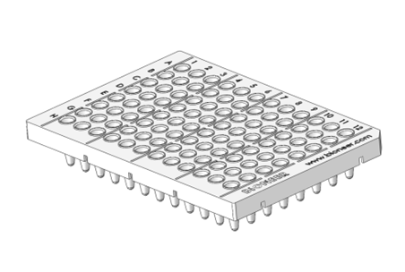 96 well plate png 7 » PNG Image.