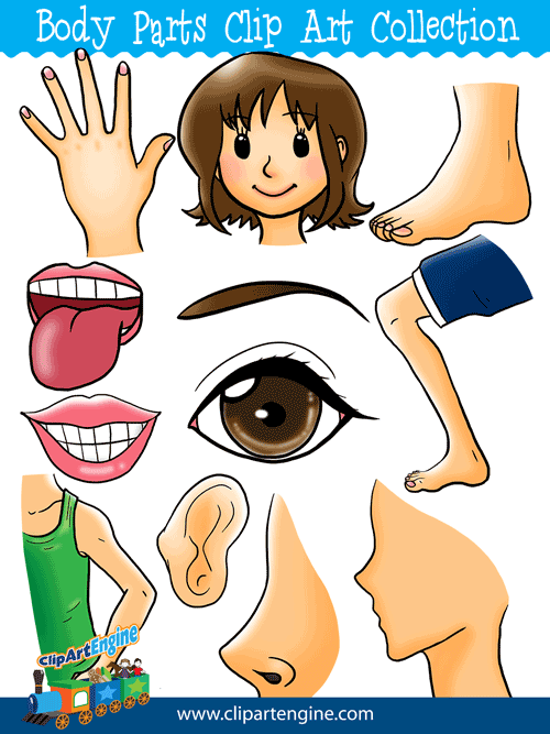 Body Parts Clip Art Collection for Personal and Commercial Use.