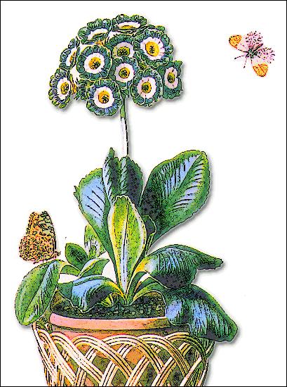 Pot Flower Clip Art Download.