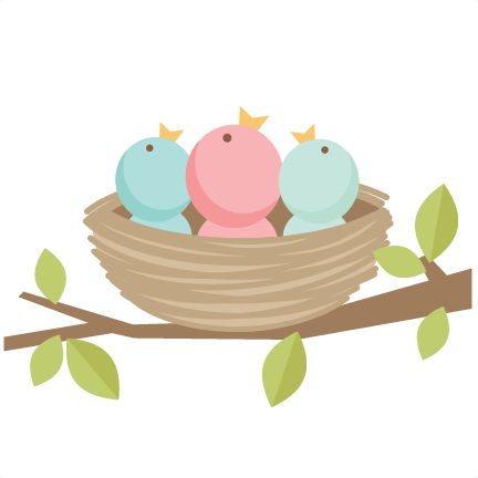 Baby Bird Clipart at GetDrawings.com.
