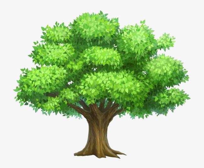 Green Tree, Tree Clipart, Green, Big Tree PNG Transparent.